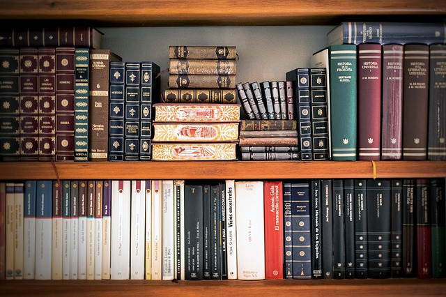 knihy v policích)